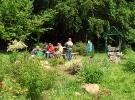 w-naszym-ogrodzie